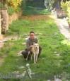 Dog Sitter o pensione