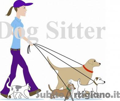 Dog Sitter tutte le mattine