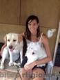 Pensione casalinga per Animali