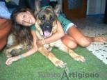 Dog sitter Amorevole