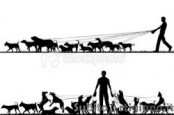 Dog sitter e Dog walker